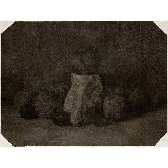 Натюрморт № 1, из серии «Тотальный Натюрморт» Колосов Андрей