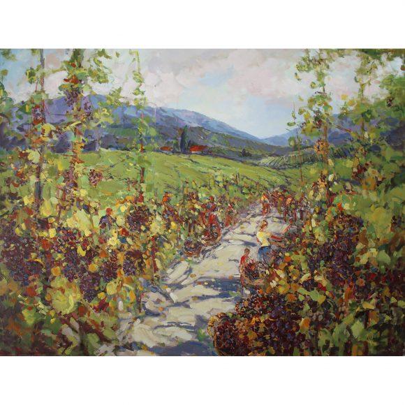 Сбор винограда Отрошко Александр