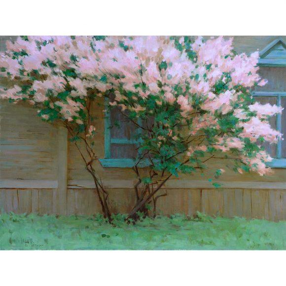 Окна в сад Уткин Евгений