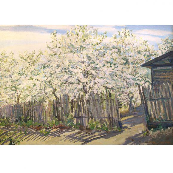 Яблоневый сад Пурыгин Валентин